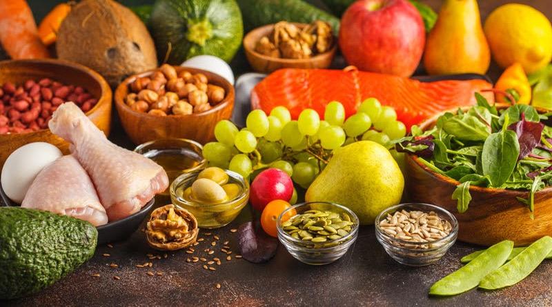 paleo diet food plan