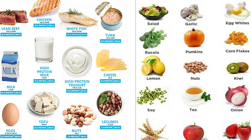 high protein food list for weight loss