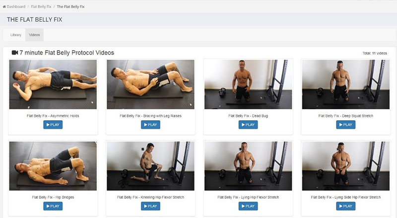 flat belly fix exercise book online