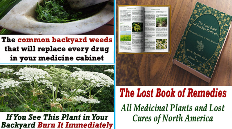 The Lost Book of Remedies review Guide Changed My Life Forever