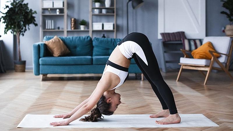 yoga stretched puppy